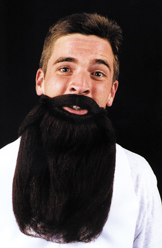Costumes For All Occasions CB45BK Mustache Beard Black 14In