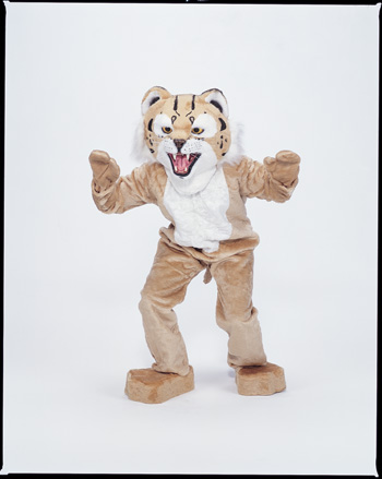 Costumes For All Occasions CM69018 Bobcat Mascot Complete