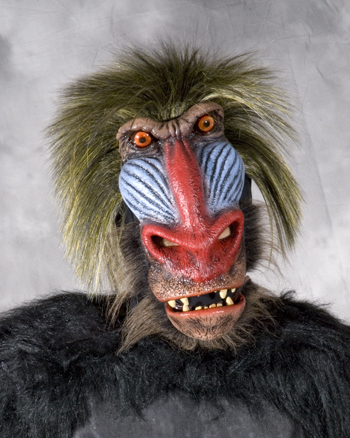 Costumes For All Occasions 7005BS Baboon Mask