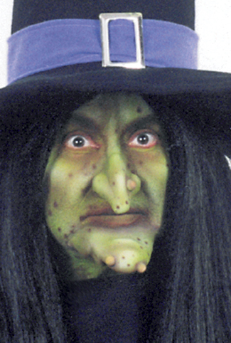 Costumes For All Occasions FA23 Witch Kit Nose Chin