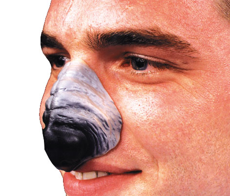 Costumes For All Occasions FA53 Nose Werewolf