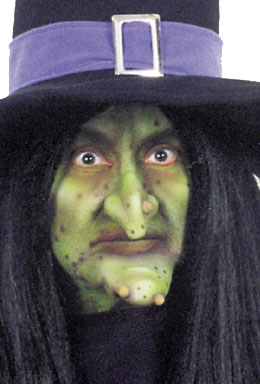 Costumes For All Occasions FA85 Witch Set Woochie Large