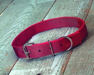 Hamilton Halter Company 1-3 4 D T Nylon Calf Collar Red 36 Inch - DCC RD36