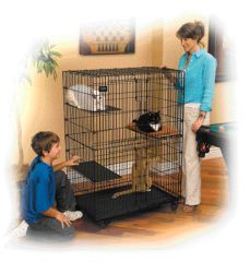 Midwest Container Cat Playpen Black - 130