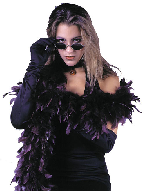 Costumes For All Occasions FW9101PR Boa 6ft Gothic Feather Purp