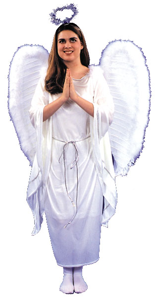 Costumes For All Occasions AC03 Angel Dress 1 Size