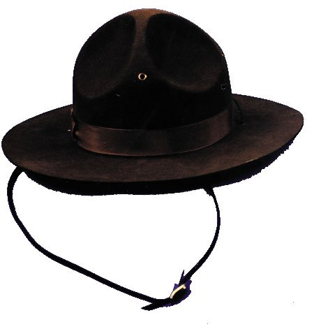 Costumes For All Occasions GA32LG Campaign Hat Large