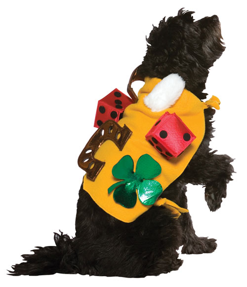 Costumes For All Occasions GC5002 Lucky Dog Costume