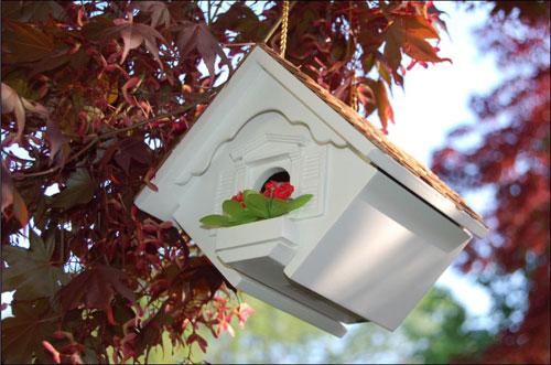 Home Bazaar  Inc. HOMEHB2044 Little Wren Bird Bird House