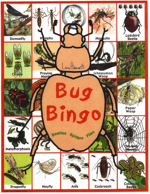 Lucy Hammet Bingo Games Bug Bingo Game LH2777