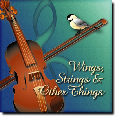 Animelodies Wings  Strings  and Other Things