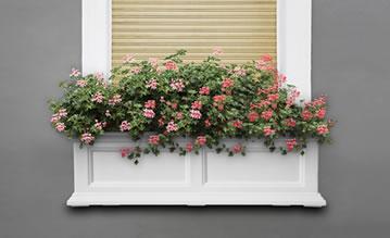 MAYNE 5822W Fairfield 3ft Window Box- White