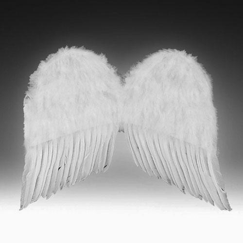 Forum Novelties Inc 9310 Child Feather Wings Black