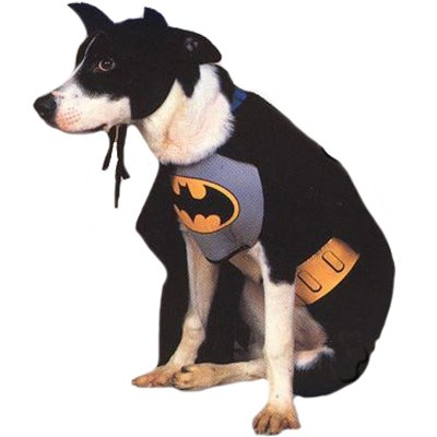 Rubies Costume Co 6132 Batman Pet Costume Size Small