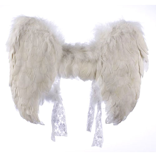 Costume Wings & Tails