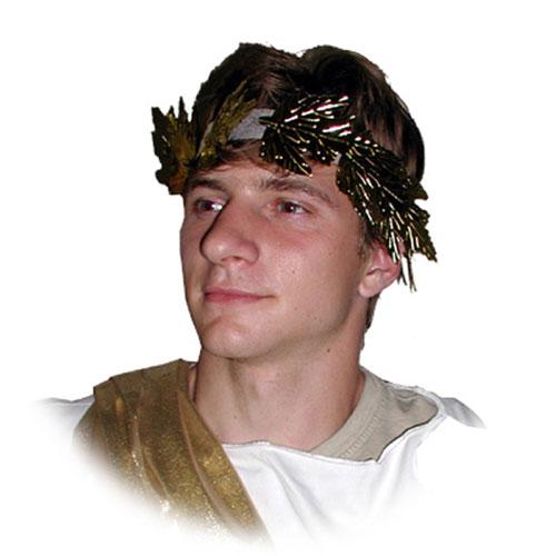 Costume Headbands & Hair Accessories