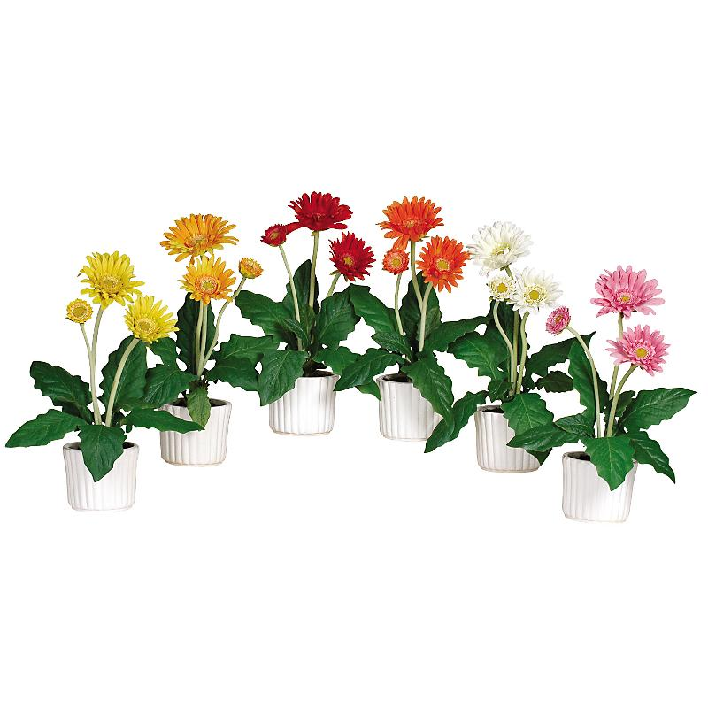 Nearly Natural 4600 Gerber Daisy with White Vase- Set of 6 - Mixed