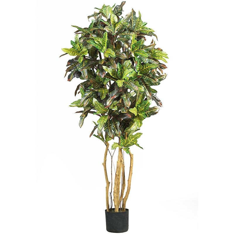 Nearly Natural 5180 5  Croton Silk Tree- Green