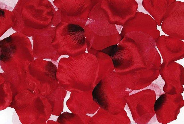 Darice RC-7210-02 Rose Petals 300/Pkg