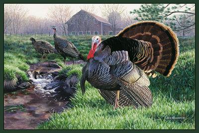 Custom Printed Rugs TURKEY Turkey Wildlife Rug