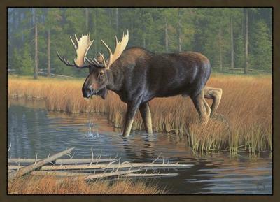 Custom Printed Rugs MOOSE Moose Wildlife Rug