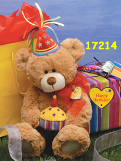 First & Main 17214 Bear E Special Day