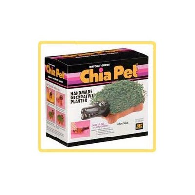 Joseph Enterprises CP036-16 Crocodile Chia Pet- Case of 16