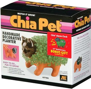 Joseph Enterprises CP 031-16 Kitten Chia Pet- Case of 16